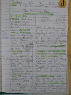 Emeli's amazing writing!