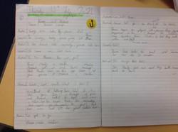 Shaheer's brillliant writing!
