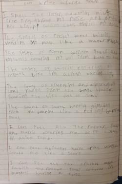 Santiago's brilliant sense poem!