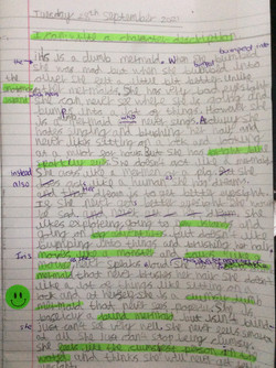 Omer's wonderful writing!