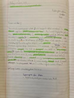 Lara's brilliant writing!