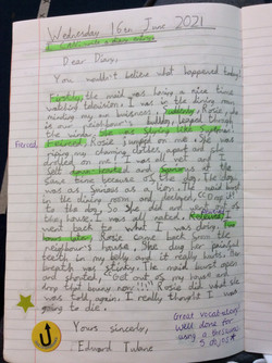 Dexter's fantastic diary entry!
