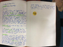 Denis's brilliant writing!
