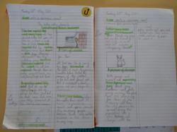 Krishika's incredible writing!