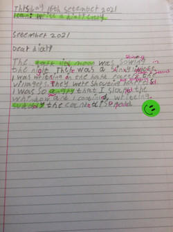 Leonardo's fabulous writing!
