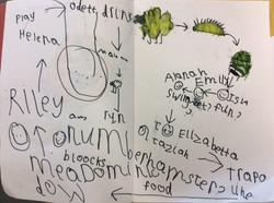 Isla's fantastic story map!