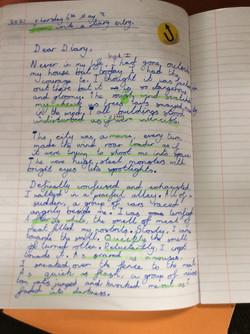 Ludwig's wonderful writing!