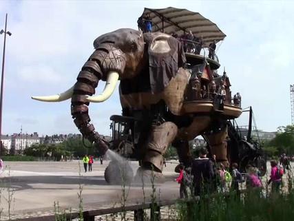 elefante nantes.mp4