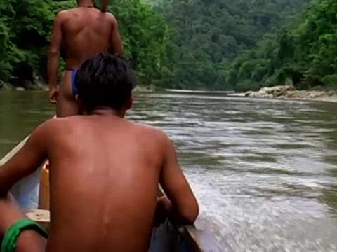 canoa selva.mp4