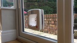 Cat Flap in double glazed upvc door
