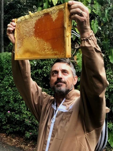 Paul holding up a frame of Greenwood Farm honey