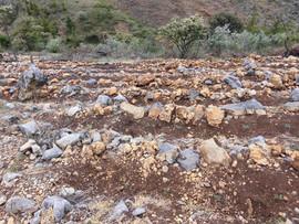Terrazas de cultivos en tierras altas del municipio