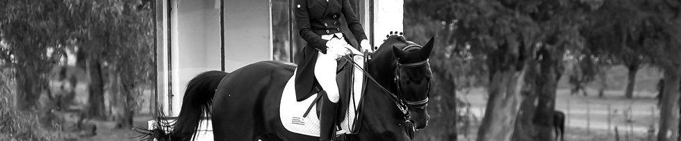 Agustina Bravo y Sandiago - Escuela de Equitación    _WIL5750_edited_edited.jpg