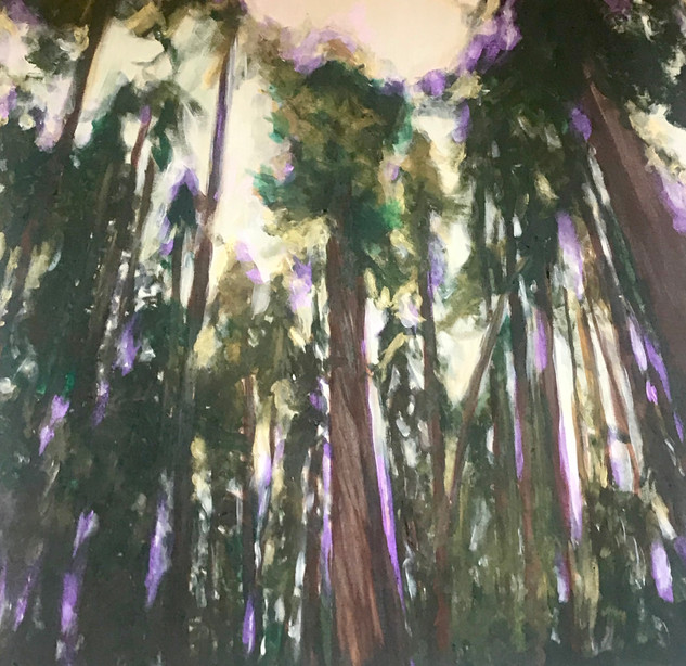Peirce the Veil, Redwoods