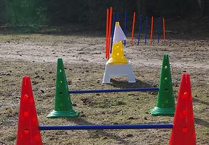 Parcours kwispelkracht training