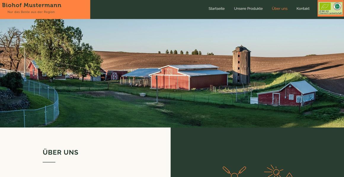 Ein Beispiel einer meiner Webseiten