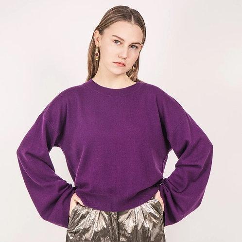 Fashion Plum Sweater (Female)