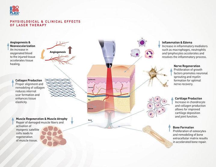 physiological effects.jpg