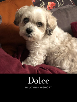 Dolce edit photo.png