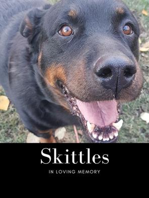 skittles edit pic.png