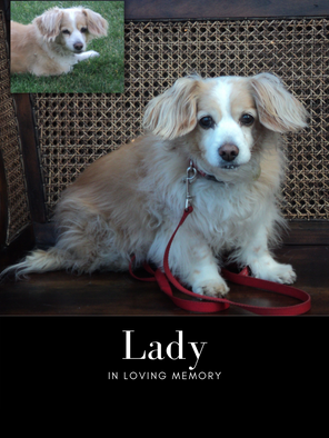 lady edit photo.png