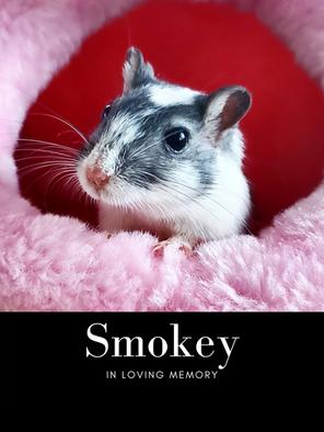 smokey pic edit.png
