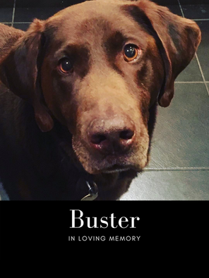 buster memoory photo.png