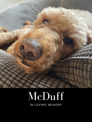 mcduff edit pic.png