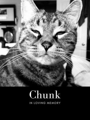 Chunk pic.png