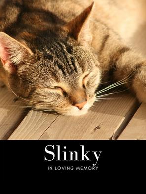 slinky pic edit.png