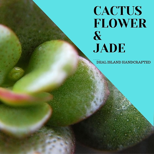 Cactus Flower and Jade - Deal Island Handcrafted Scented Candle - 4 oz., Single