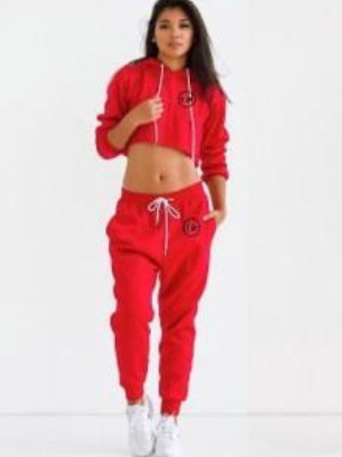 GUDAH~ Ruby Red Embroidery Crop Top