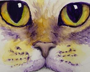 Criss Macione, Mardi Gras Cat