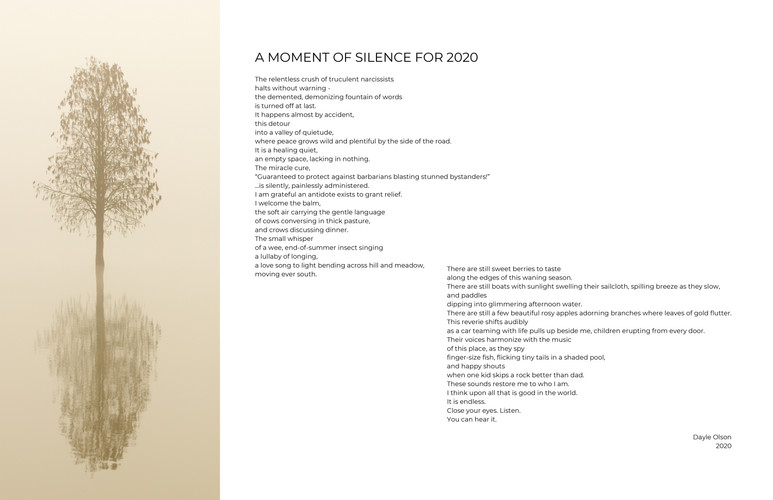 """""""A Moment of Silence for 2020"""" by Dayle Olson"""