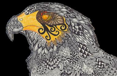 Haris Hawk