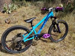 flow kids bike 20 blue purple