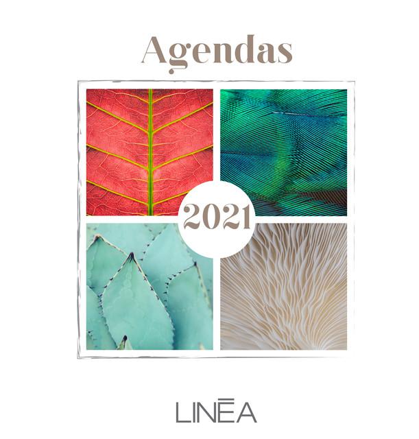 Catalogue agendas Linéa