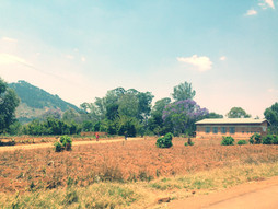 Impact Evaluation of GEC Programme for the Advancement of Girls Education in Mozambique by Save the