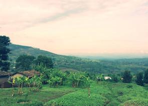 Impact Evaluation: Rwanda Education Advancement Programme II