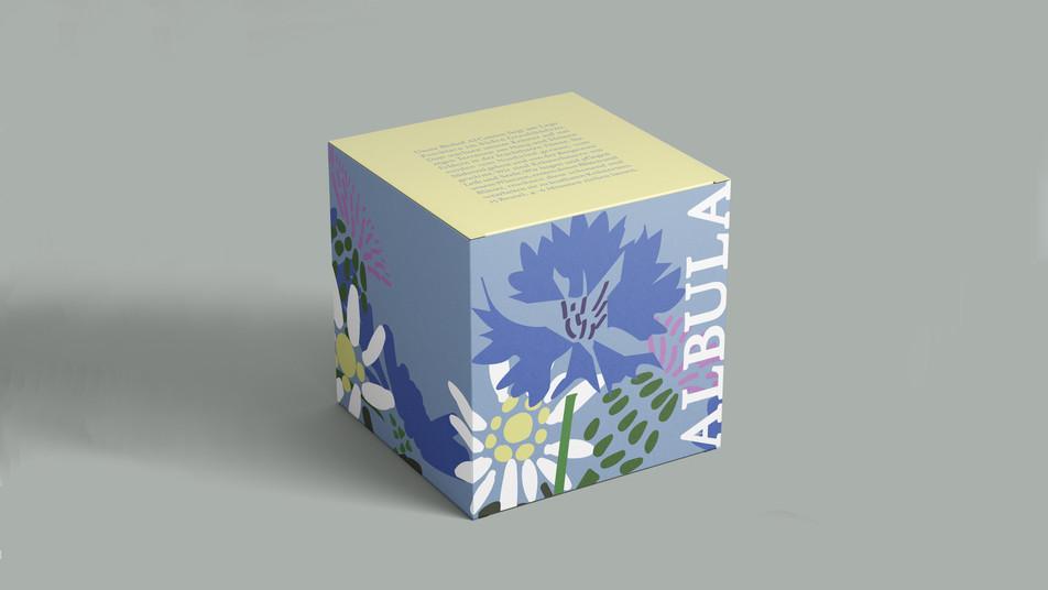 Packaging Design: Tea Box
