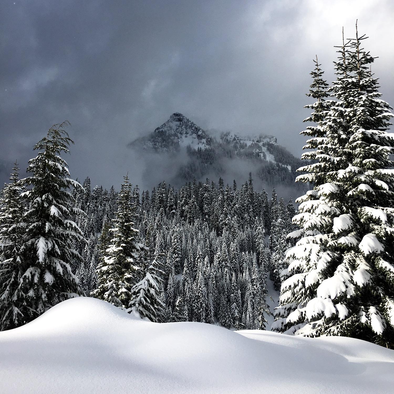 PNW Winter