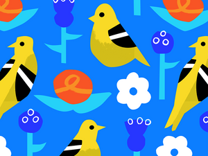goldfinch01-1.png