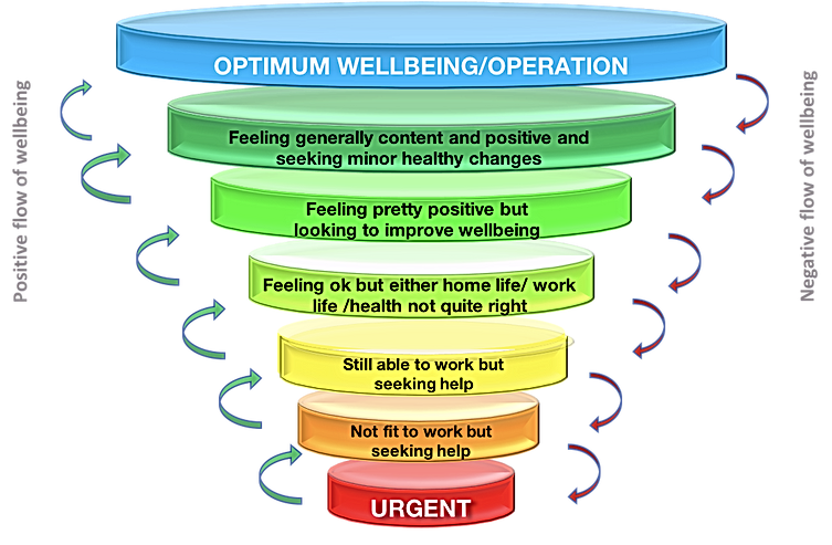 Wellbeing_edited.png