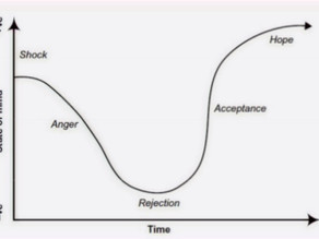 Managing Change - The Sarah Model - By Resilient Pilot Mentor Craig