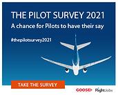 Pilot Survey.png