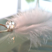 Swarovski Crystal Feather Bridal Hair Pins