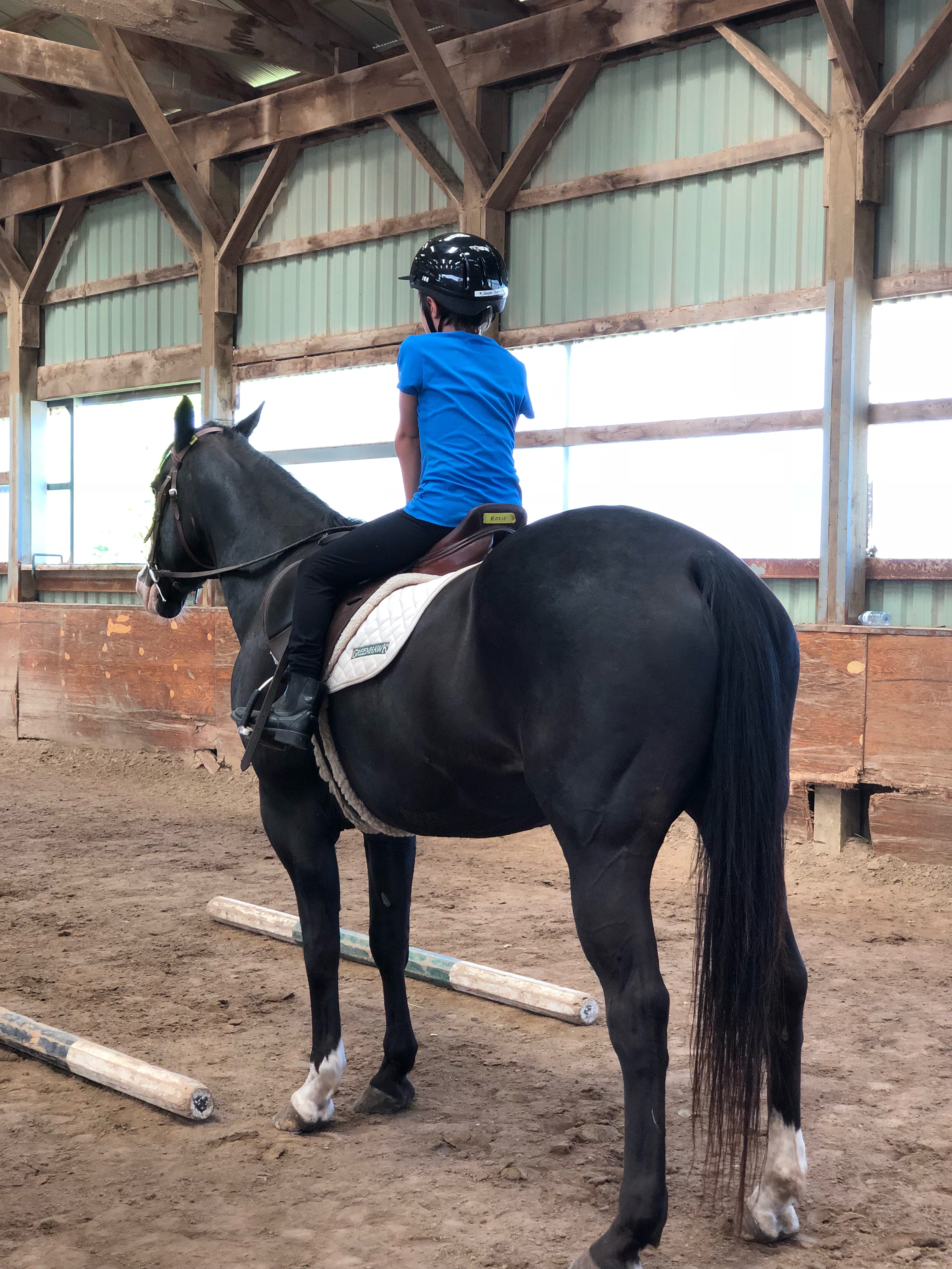 Iron Horse School Lessons
