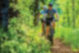 MTB skov.jpg