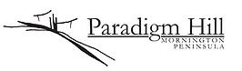 logo-paradigm.png
