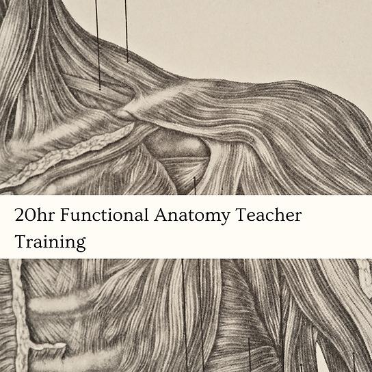 100hr Yin Yoga Teacher Training (6).png